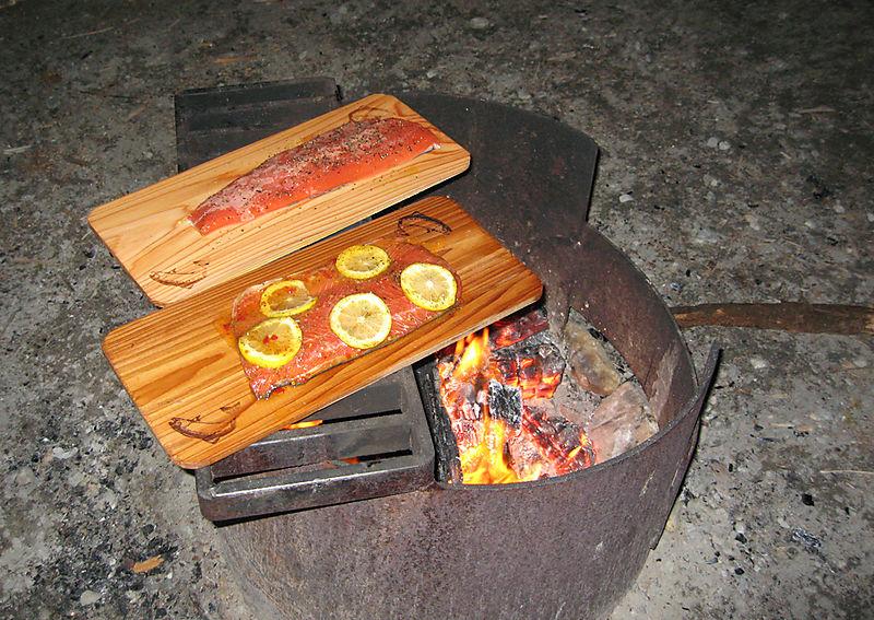 Camp Salmon