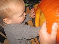 Pumpkin Carve 4