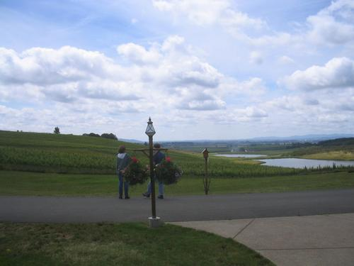 Looking out over the pond at Cherry Hill Winery.